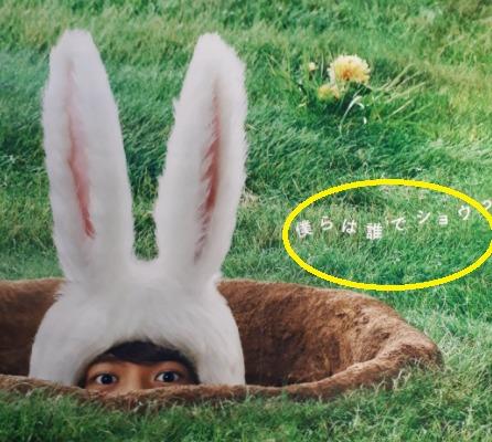 Huluウサギの広告