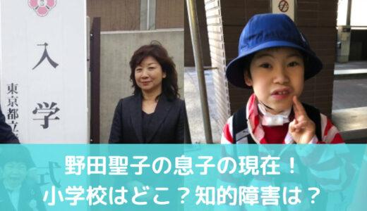 野田聖子の息子の現在は?健常者の小学校に通うも知能障害が残る!