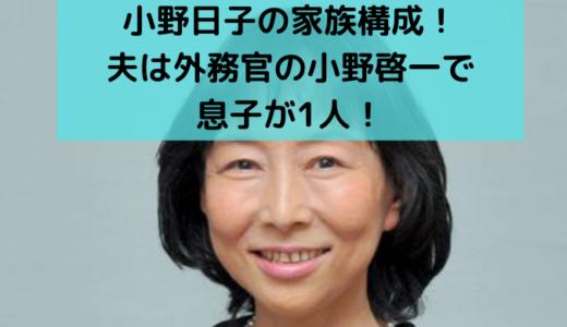 小野日子の家族構成!【顔画像】夫は啓一で子供(息子)が1人!年齢も調査!