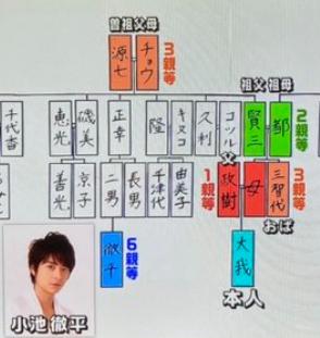 京本大我と小池徹平の家系図