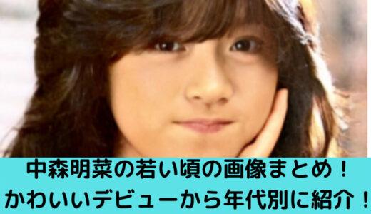中森明菜の若い頃の画像まとめ!かわいいデビューから年代別に紹介!