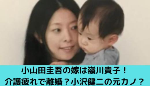 小山田圭吾の嫁は嶺川貴子!介護疲れで離婚?小沢健二の元カノ?子供はミュージシャン!