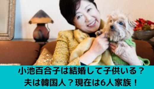 小池百合子は結婚して子供がいる?夫は韓国人?現在は6人家族!