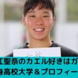 入江聖奈のカエル好きはガチ!出身高校大学&プロフィール!
