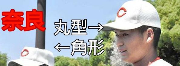 智弁学園と智辯和歌山の帽子比較画像