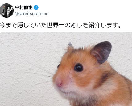 中村倫也がハムスターを飼っているツイート