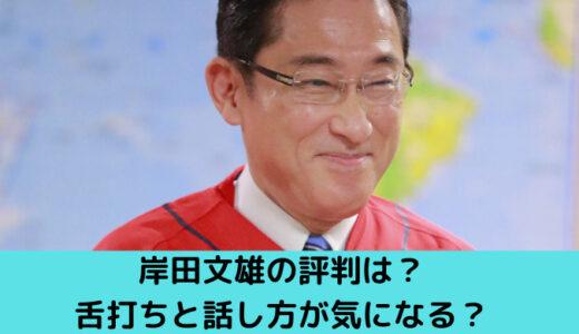 岸田文雄の評判は?記者には人気だけど、舌打ちと話し方が気になる?