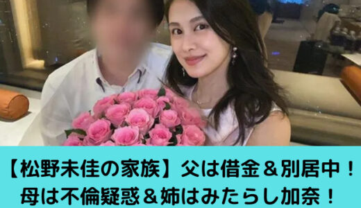 松野未佳の家族!父は離婚裁判中で政界を引退!母は不倫疑惑&姉は臨床心理士!